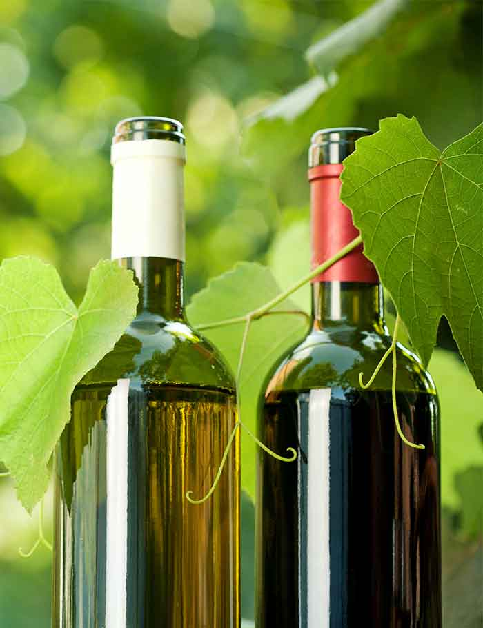 vino-bio